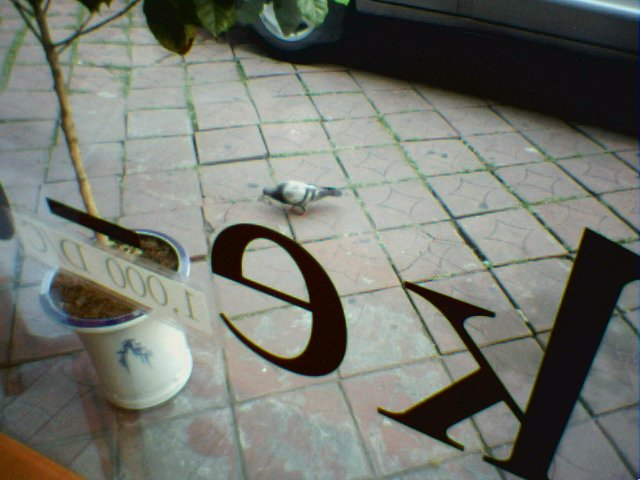 Upload:2_Set87_02(bird).jpg