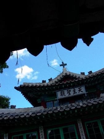 Upload:KangwhaChamccol_32.JPG